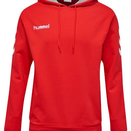 core hoodie devant