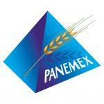 Panamex Redon soutient le ESR Handball